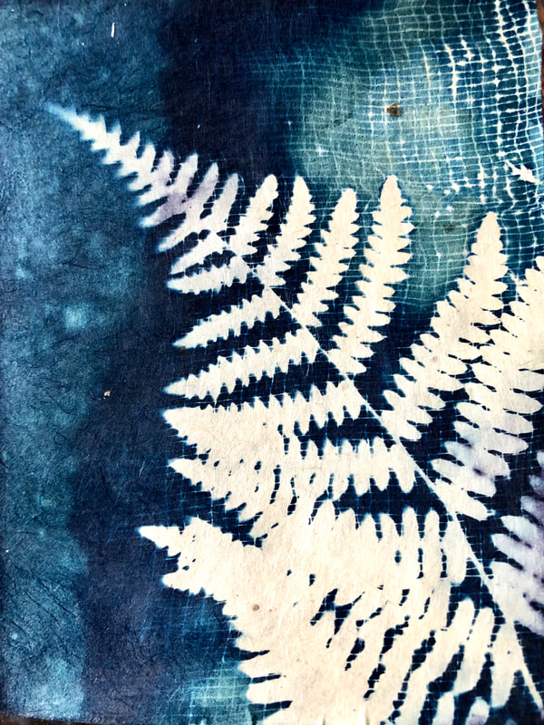 cyanotype of fern on handmade Japanese gampi paper